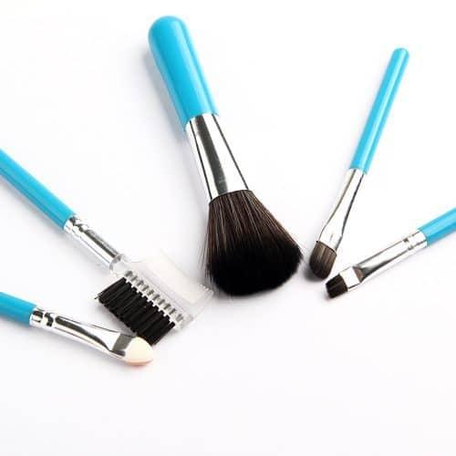 Дешевый набор косметических кистей для макияжа 5 шт.