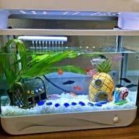 Домик для рыбок в аквариуме – дом ананас Губки Боба