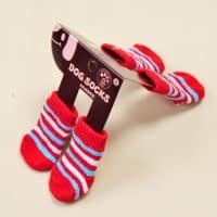 Носки для собаки антискользящие с силиконовыми вставками