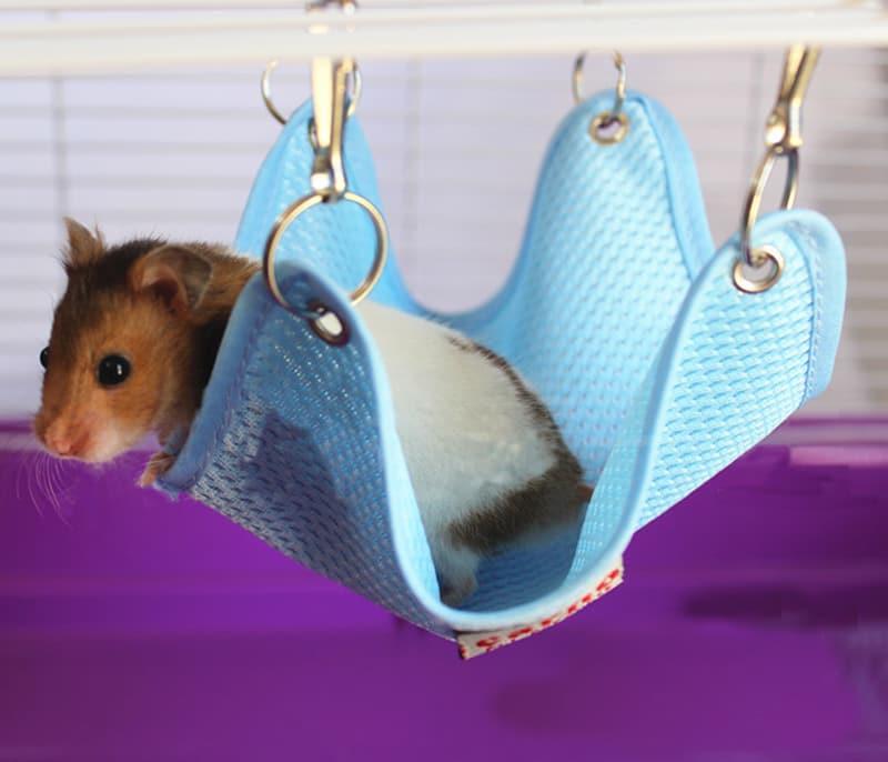 Вязанный домик для крысы своими руками Пошаговое