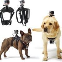 Крепление-ремень для собаки с держателем для камеры GoPro