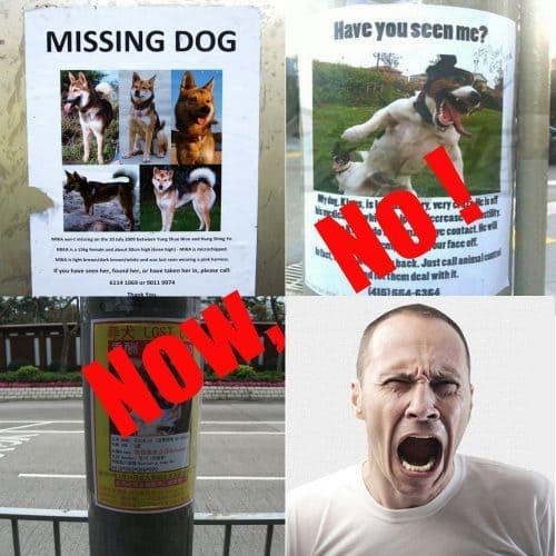Ошейник для собак и кошек с гравировкой адреса, имени, номера телефона хозяина на заказ