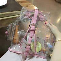 Прозрачный женский рюкзак (ПВХ)
