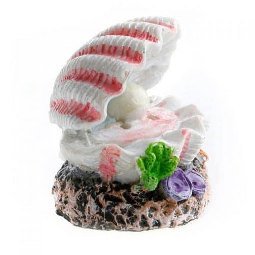 Раковины для декора аквариума