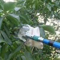 Подборка товаров для сада и огорода на Алиэкспресс - место 17 - фото 2