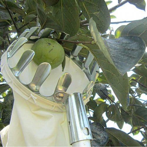 Плодосъемник инструмент для сбора яблок, фруктов с мешком