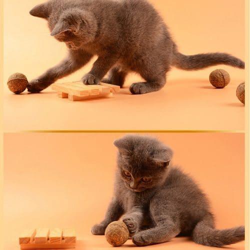 Игрушка-мячик с кошачьей мятой для кошки