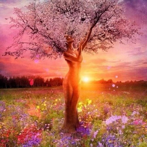 Картина-раскраска по номерам на холсте акриловыми красками Сказочное дерево девушка