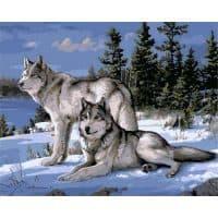 Картина-раскраска по номерам на холсте Волки