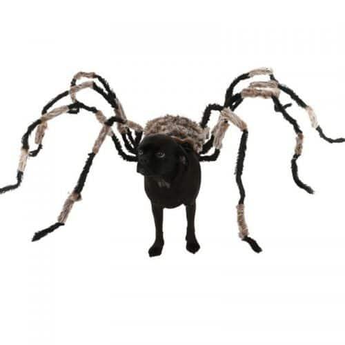 Костюм паука для собаки (3 размера)