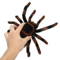Паук игрушка на пульте дистанционного управления