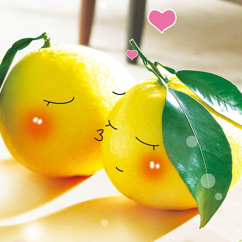 сколько прорастает семя лимона