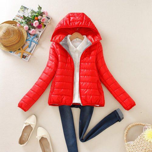 Женская демисезонная осенняя стеганая утепленная куртка на молнии с капюшоном