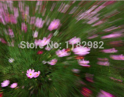 УФ-фильтры Kenko 37/40.5/43/46/49/52/55/58 мм