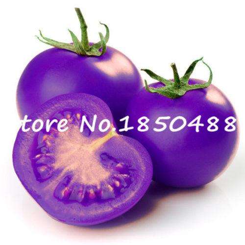 Семена фиолетовых помидоров 100 шт.