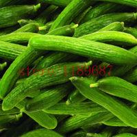 Семена длинноплодных больших огурцов 100 шт.