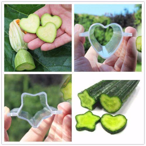 Формы для выращивания фигурных огурцов и других овощей и фруктов