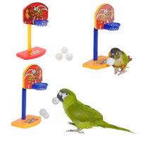 Баскетбольное кольцо для попугая