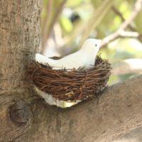 Декоративное гнездо для колец на свадьбу