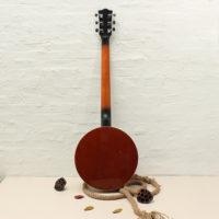 6-струнное банджо