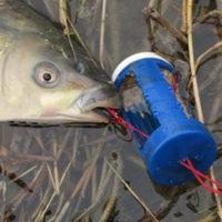 Рыболовные бомбы-кормушки-соски на карпа/карася