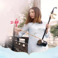 Музыкальные инструменты на Алиэкспресс - место 8 - фото 4