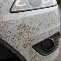 Подборка средств для ухода за автомобилем на Алиэкспресс - место 1 - фото 5