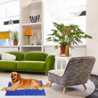 Охлаждающий коврик для собак и кошек