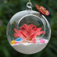 Геометрические стеклянные террариумы (флорариумы) на Алиэкспресс - место 2 - фото 3