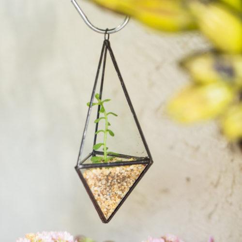 Подвесной прозрачный стеклянный террариум (флорариум) в виде пирамиды