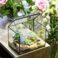 Геометрические стеклянные террариумы (флорариумы) на Алиэкспресс - место 6 - фото 2