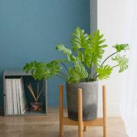 Декоративные искусственные цветы в виде пальмы, фикусов и других тропических растений