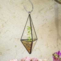 Геометрические стеклянные террариумы (флорариумы) на Алиэкспресс - место 3 - фото 5
