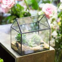 Геометрические стеклянные террариумы (флорариумы) на Алиэкспресс - место 6 - фото 3