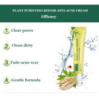Крем против акне с растительными ингредиентами plant purifying repair