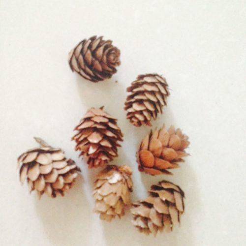 Набор маленьких сухих натуральных сосновых шишек 100 шт. для DIY поделок, новогодних венков