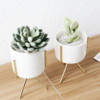 Набор из 3 керамических белых небольших горшков разного размера для цветов на подставке