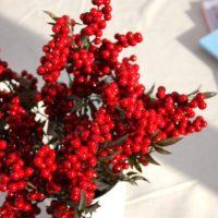 Искусственные веточки с красными ягодами рябины для DIY поделок, новогодних венков