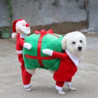 Новогодний костюм для собаки (разные размеры)