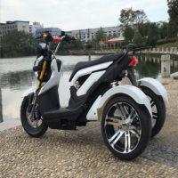 Трёхколёсный электробайк (Электрический мотоцикл)