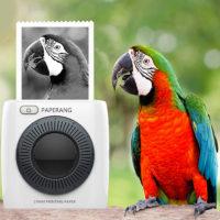 PAPERANG P2 Портативный беспроводной Bluetooth мини термопринтер