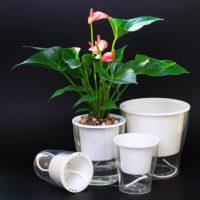 Горшки для цветов с Алиэкспресс - место 2 - фото 4