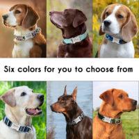 Ошейники для собак с Алиэкспресс - место 6 - фото 3