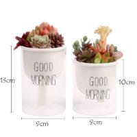 Небольшой цветочный горшок с автоматической системой полива и надписью Good Morning
