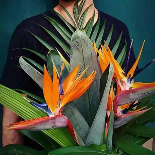 Искусственное растение райская птица