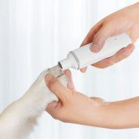 Товары для домашних животных от Xiaomi с Алиэкспресс - место 4 - фото 6