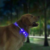 Товары для домашних животных от Xiaomi с Алиэкспресс - место 7 - фото 4
