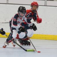 Хоккейная шайба роликовая тренировочная