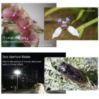 Подборка объективов Yongnuo для Canon с Алиэкспресс - место 2 - фото 5